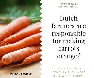 Dutch made carrots