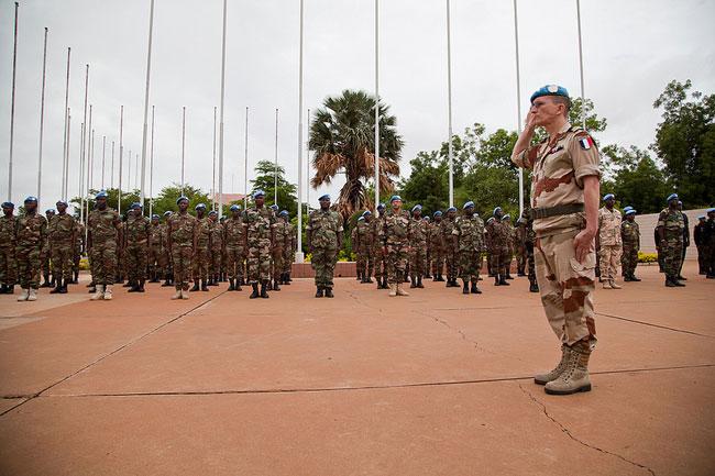 Mali and the Dutch