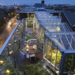 Zoku-rooftop-garden