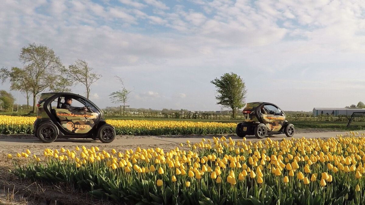 Photo-of-cars-driving-through-tulip-field-tour-Netherlands