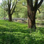 Heemtuin-Sloterpark