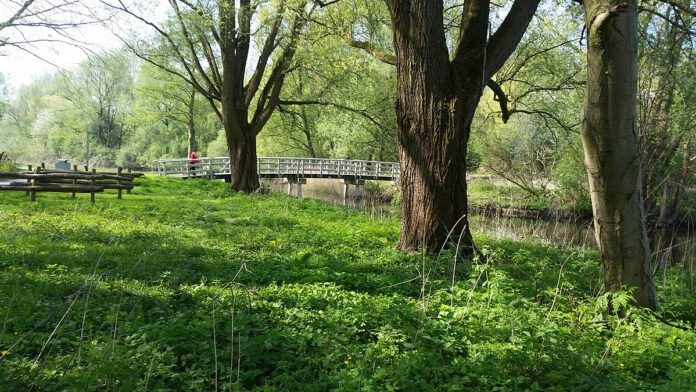 Heemtuin-Sloterpark-wandelen-route-amsterdam