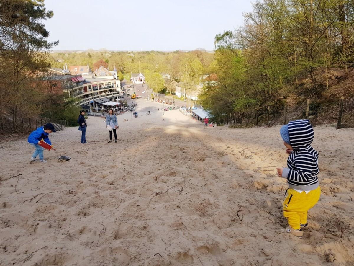 Dutch Beaches: Sanddune at Paal 29