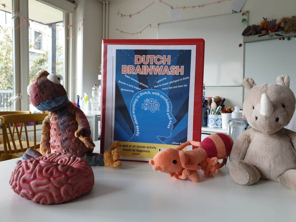 Photo-of-classroom-table-with-stuffed-animals-and-framed-poster-of-Dutch-brainwash-logo