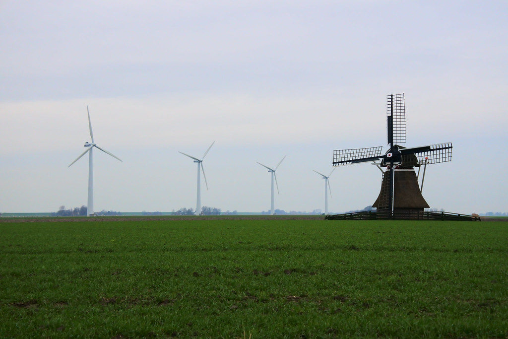 Dutch landscape needs greater protection against fragmentation caused by the agriculture industry – DutchReview