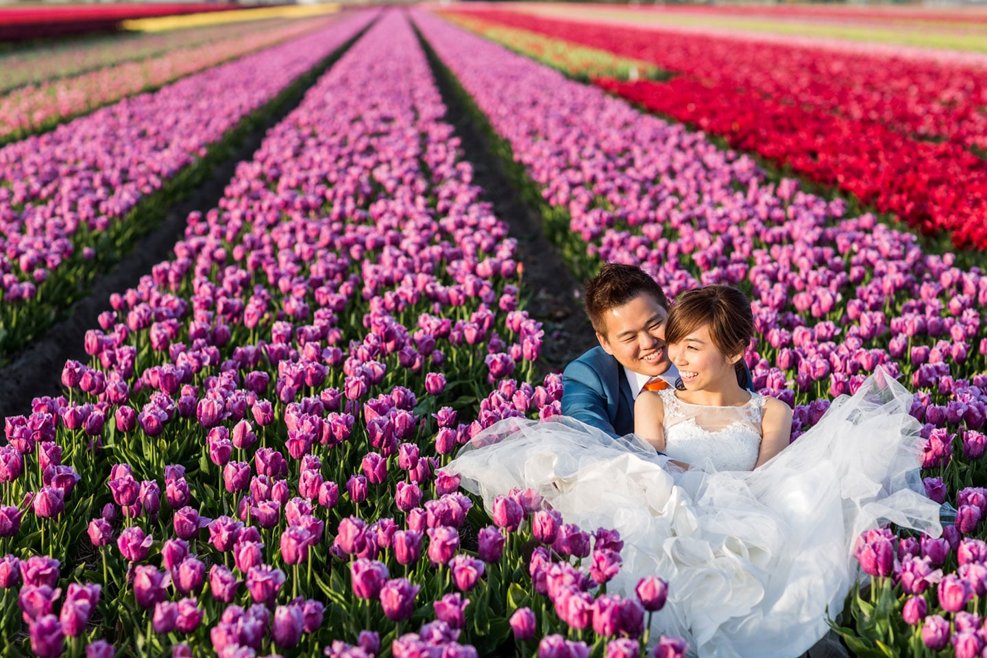 Getting married in the Netherlands - Dutch wedding