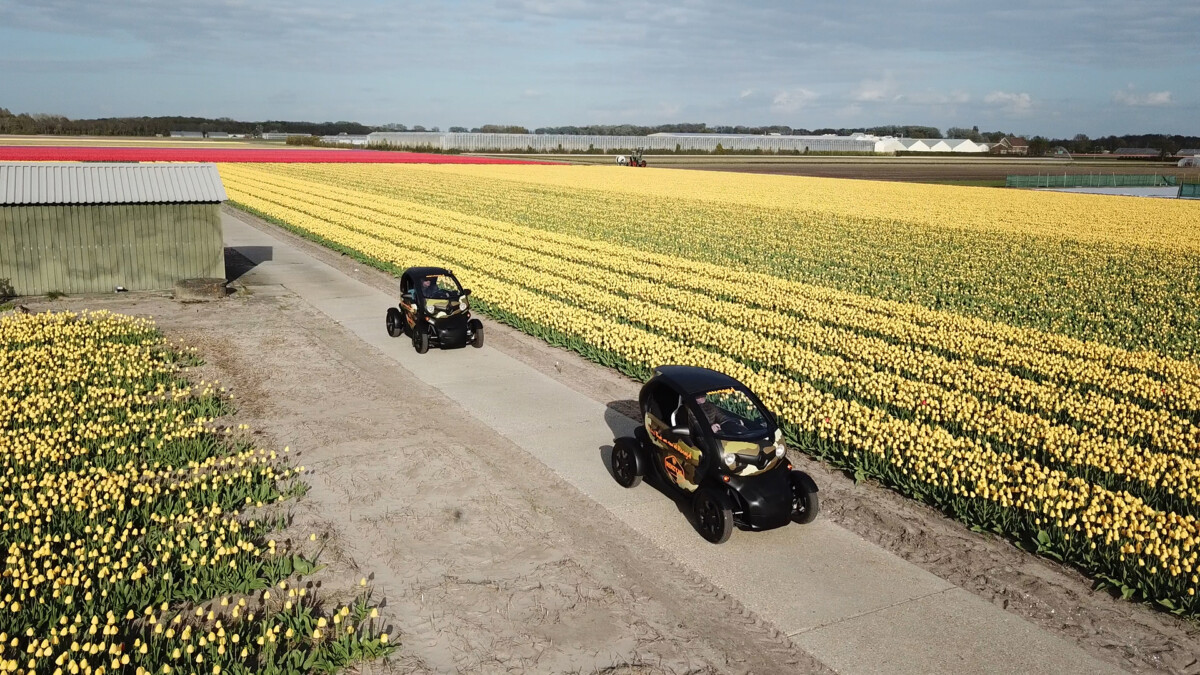 Photo-of-cars-driving-around-Renzy-tulip-field-tour-holland-Netherlands