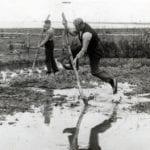 Dutch_Farmer_Crossing_Canal_1938_Fierjleppen_Nationaal Archief_Flickr
