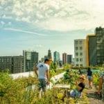 Het Dak Rotterdam – by Yoreh Schipper-1