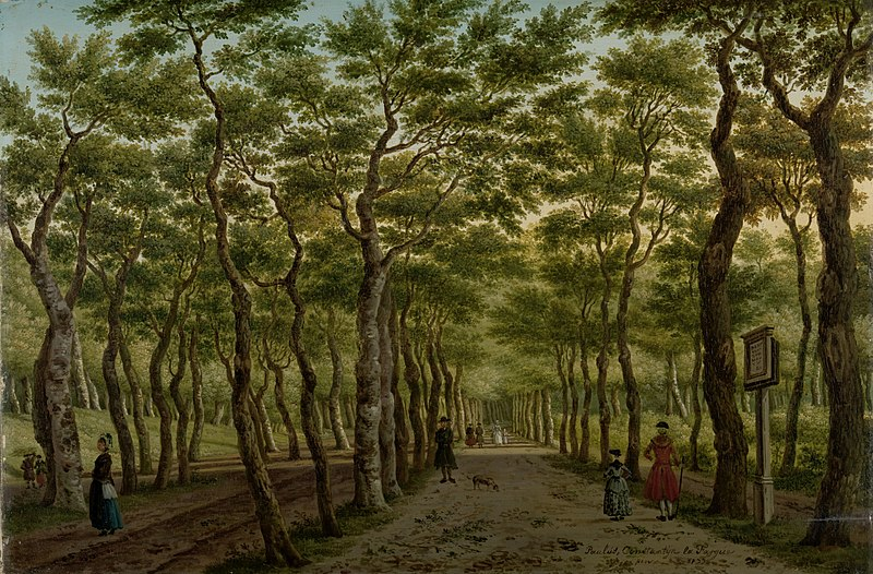 Things you didn't know about The Hague: The forest was almost cut down by the French