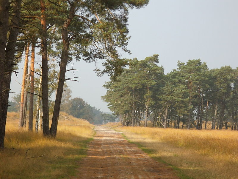 national parks in the netherlands