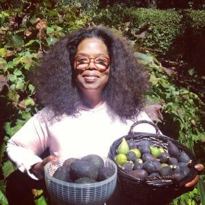 Avocados and oprah