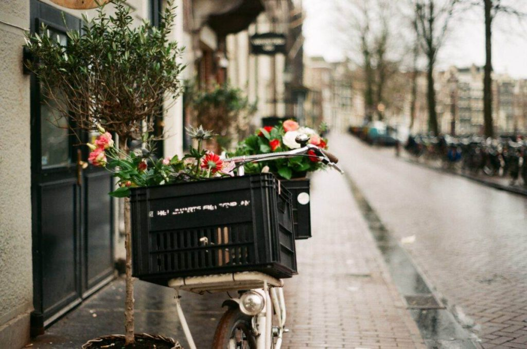 Bike-with-flowers-in-the-basket-in-Amsterdam