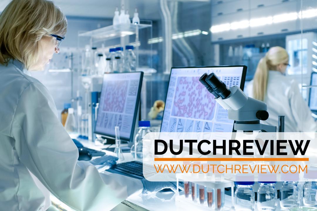 dutchreview.com