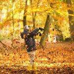 Haarlem_Park_Leaves_Autumn