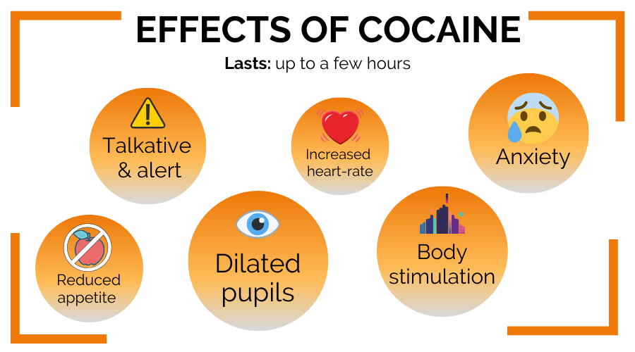 The effects of cocaine in the Netherlands