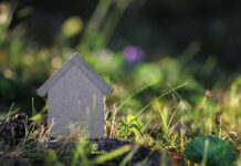 Photo-of-small-wooden-house-in-grass-Netherlands