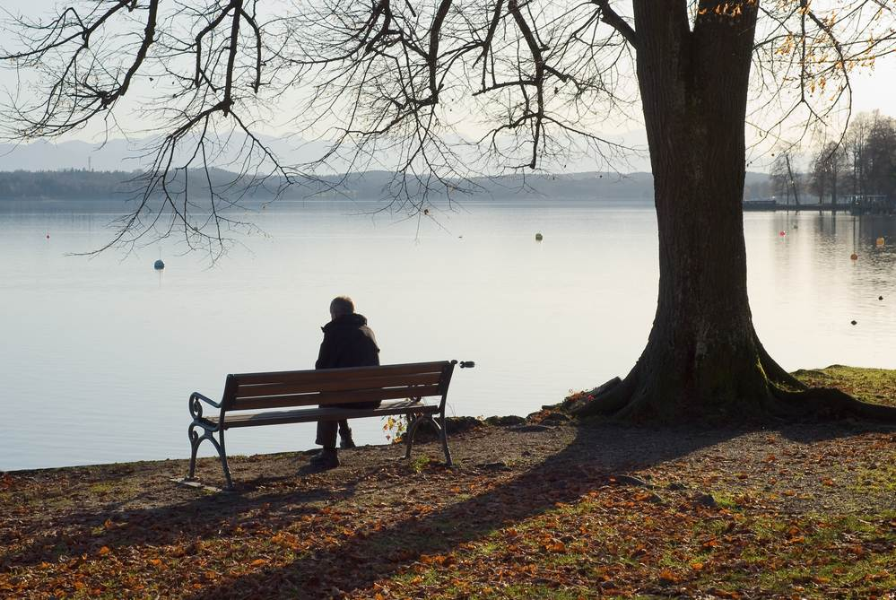 Photo-of-person-sitting-alone-on-bench-under-tree