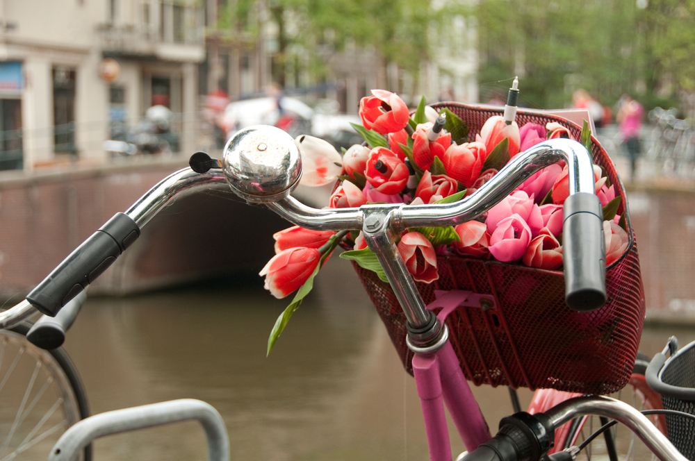 Flowers-and-cycling-two-things-the-Netherlands-does-best