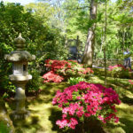 DutchReview_Japanese_Garden_1