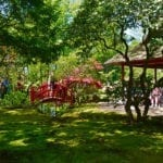 DutchReview_Japanese_Garden_3