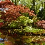DutchReview_Japanese_Garden_4