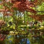 DutchReview_Japanese_Garden_6