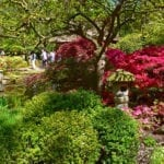 DutchReview_Japanese_Garden_7