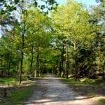 DutchReview_Tilburg_nature