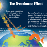 DutchReview_greenhouse-gasses