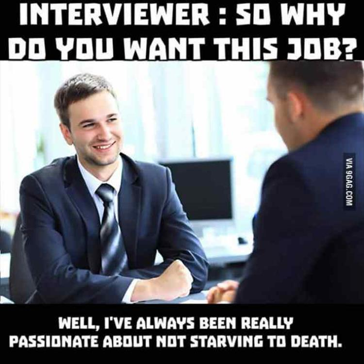 Job interviews in the Netherlands