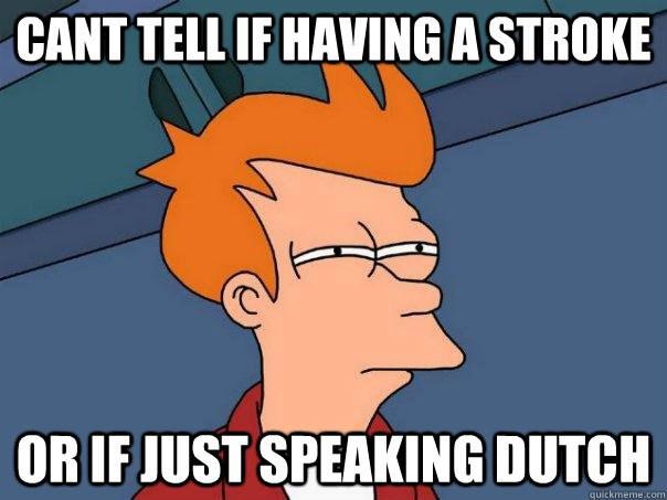 untranslatable Dutch words