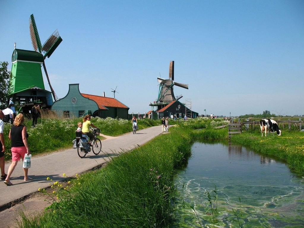 day trips from Amsterdam to windmills