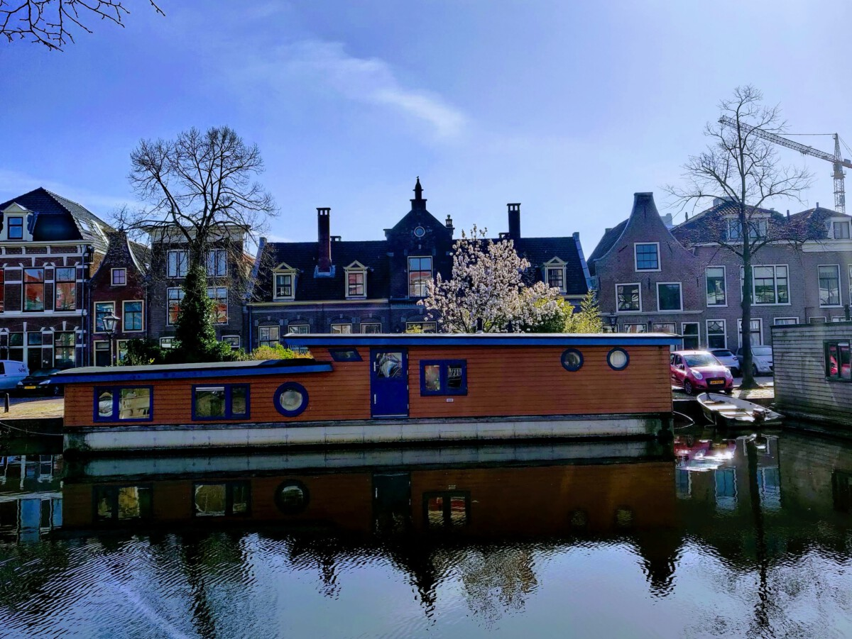 Leiden sun