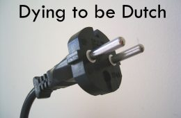 European_electrical_contour_plug_(not_earthed)