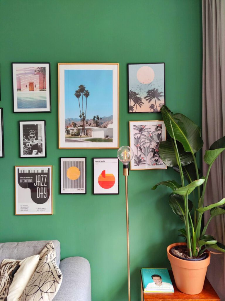 pot plant and picture frames