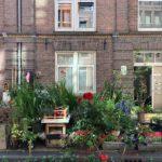 Flower-vases -on-a-dutch-street