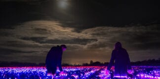Photo-of-GROW-light-installation-in-field-the-Netherlands