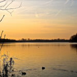 Gaasperplas-lake