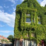 Green-facade-of-a-dutch-house