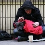 Homeless in the Netherlands with a dog