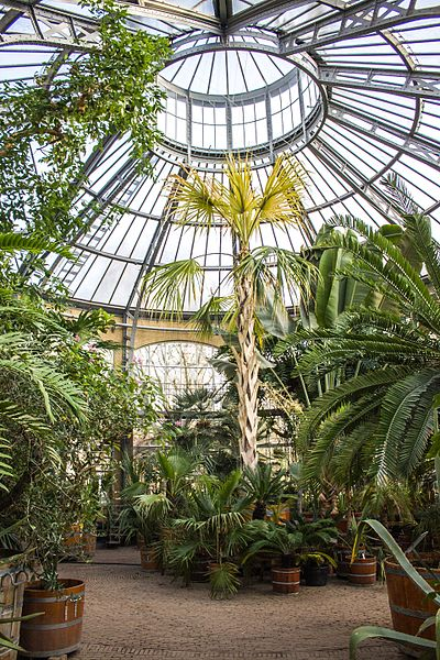 the botanical gardens in amsterdam