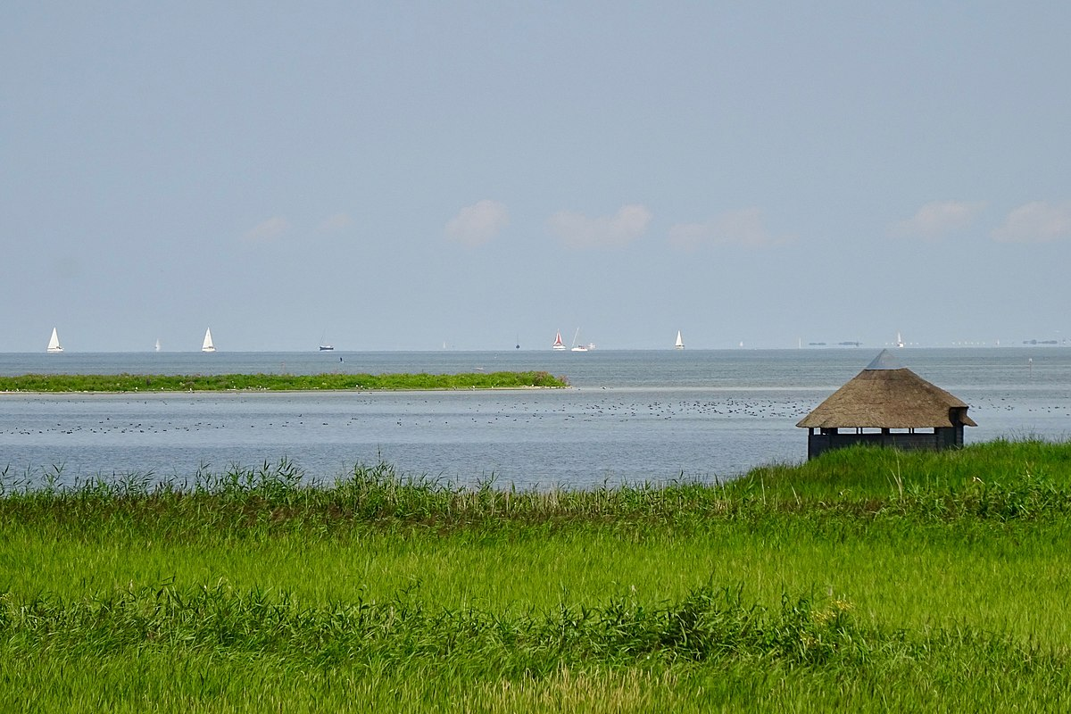 A small hut sits in the grass in front of the large IJsselmeer. Sailboats in the distance.