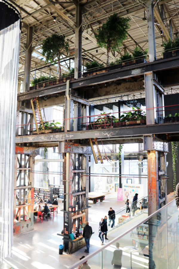 Sustainability, Innovation, Plants, LocHal, Tilburg, Library, Meeting Places