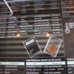 best hash coffeeshop amsterdam