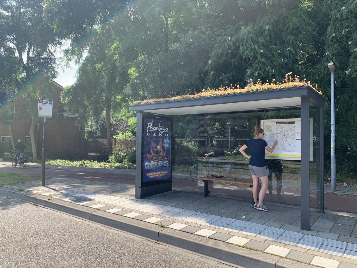 A bee stop in Utrecht
