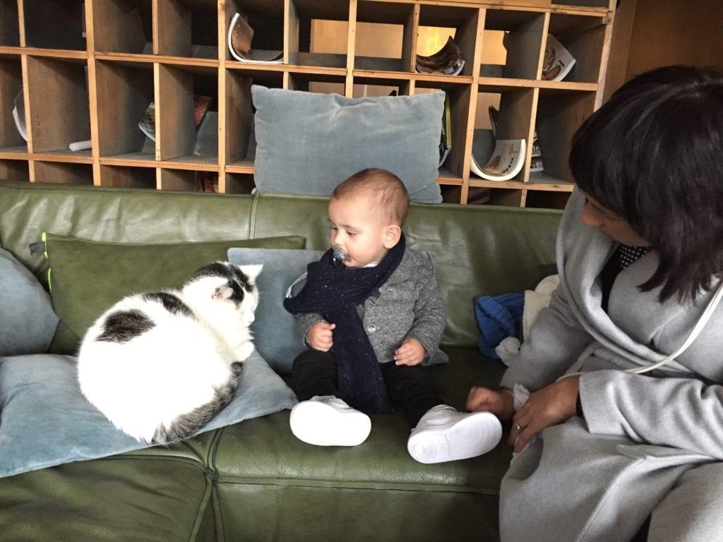 motherhood in the netherlands