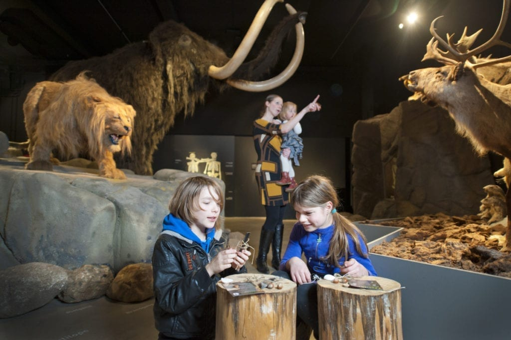 Ice age exhibit with animals in the Natuurmuseum Brabant