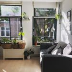 Interior-dutch-house-with-plants