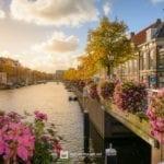 Alkemadebridge – Leiden